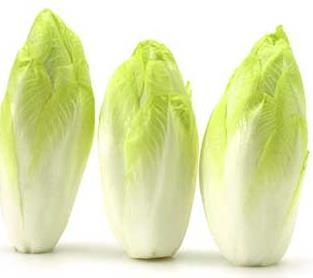 Zöldsaláta - endívia saláta