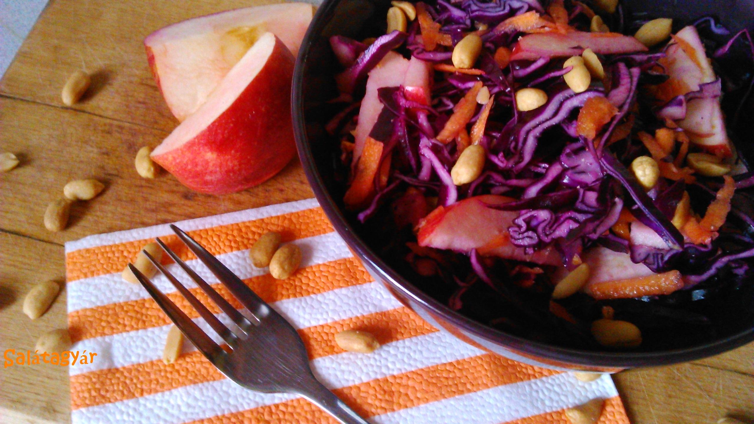 Narancsos lilakáposzta saláta